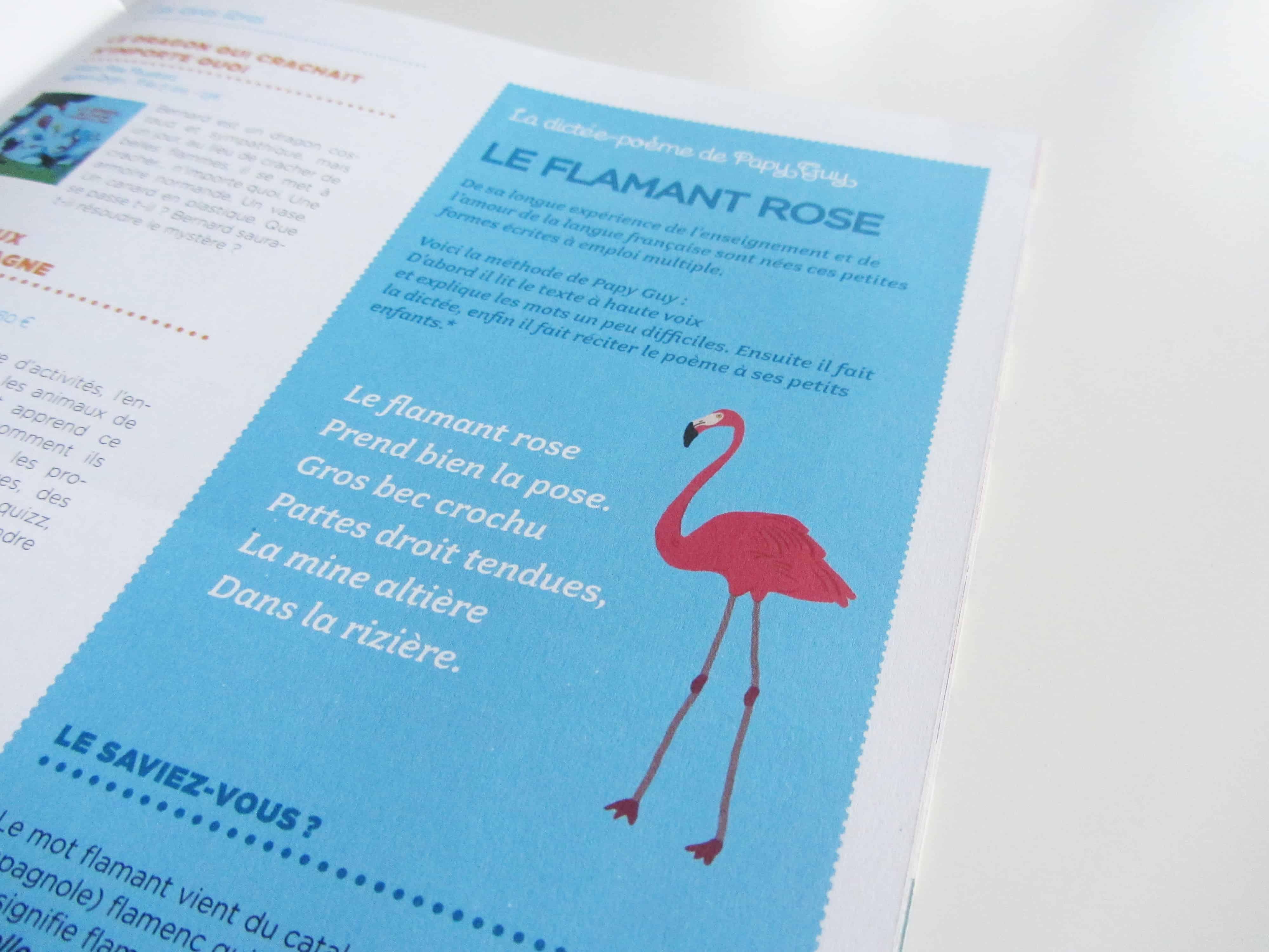 parution-ilustration-dictée-sur-le-flamant-rose-dans-le-magazine-bibouille-dessin