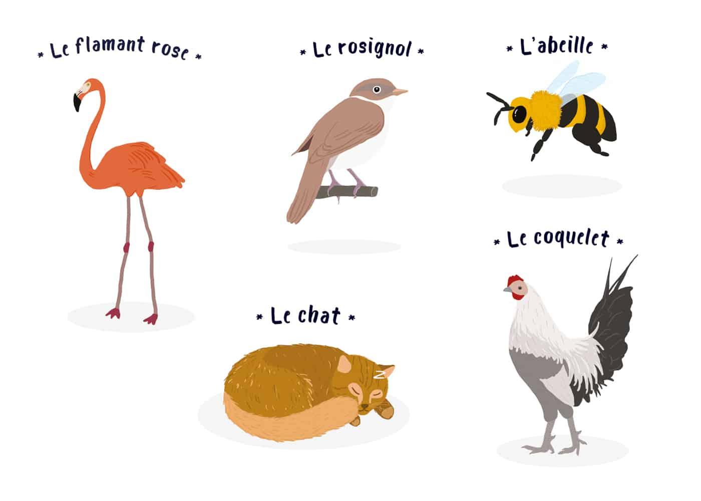 illustration-dessin-danimaux-paru-dans-le-magazine-bibouille